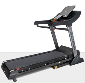 Treadmill EnduRun
